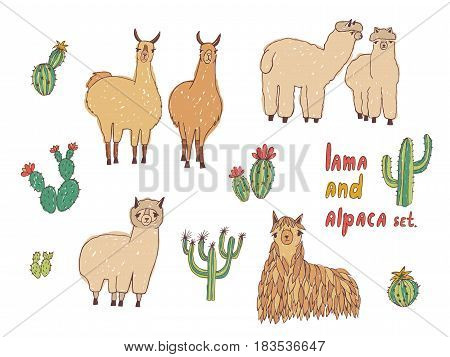 Cute Lama, Alpaca and cactuses set. Hand drawn colorful vector illustration