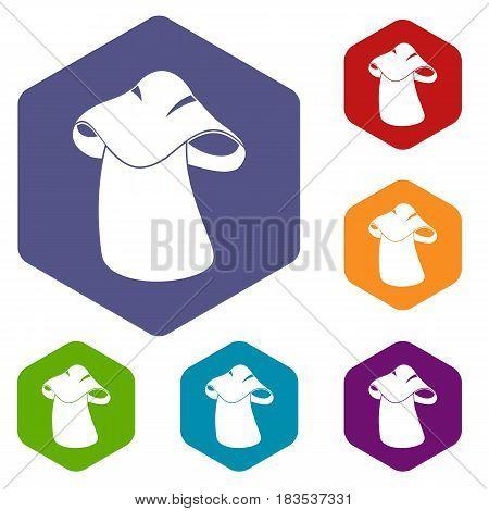 Boletus icons set hexagon isolated vector illustration