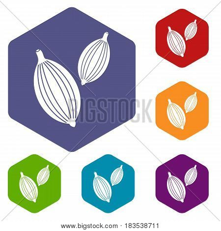 Cardamom pods icons set hexagon isolated vector illustration