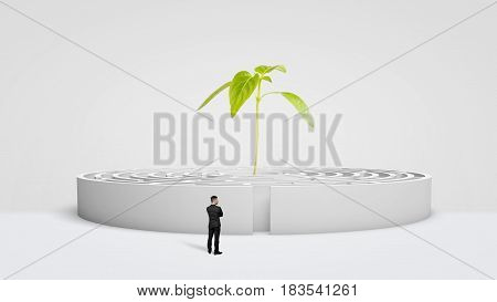 A businessman standing in front of a white round maze with a new green plant growing from its center. Growing business. Business incubator. Promising career.
