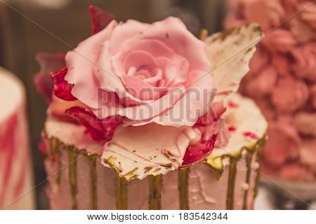 Close up Rose from pastry mastic or sugar, decoration on a sweet cake