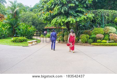 KANDY SRI LANKA - NOVEMBER 28 2016: The newlyweds in traditional wedding costumes walk in Royal Botanical Garden on November 28 in Kandy.