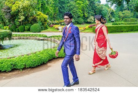 KANDY SRI LANKA - NOVEMBER 28 2016: The couple of newlyweds walk in Royal Botanical Garden on November 28 in Kandy.