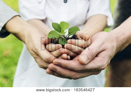 Environmental conservation people holding hands with soil and plant