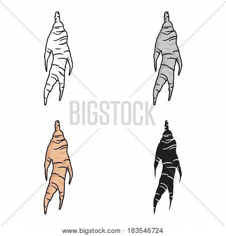 Ginseng icon in cartoon style isolated on white background. South Korea symbol vector illustration.
