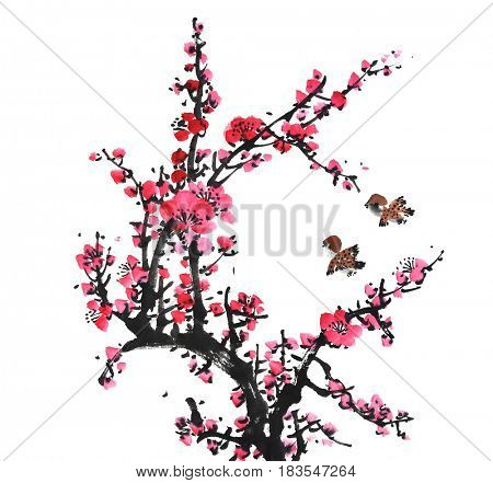 Chinese painting of flowers, plum blossom and birds, on white background.