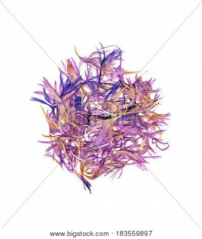 Pink And Purple Petals Of Cornflowers Pour Over White