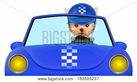 Funny puppy sitting in the blue cabriolet with helmet isolated on white background. Car rental and buying concept concept. 3D illustration with clipping path