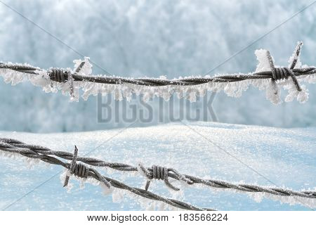 Barbed wire on the winter background with snowdrifts