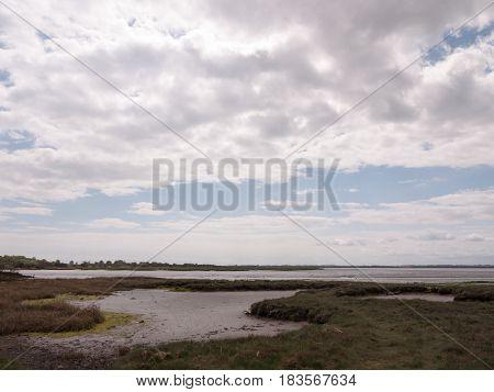 Landscape Shot Of Seaside Environment Where Birds Rest And Nest