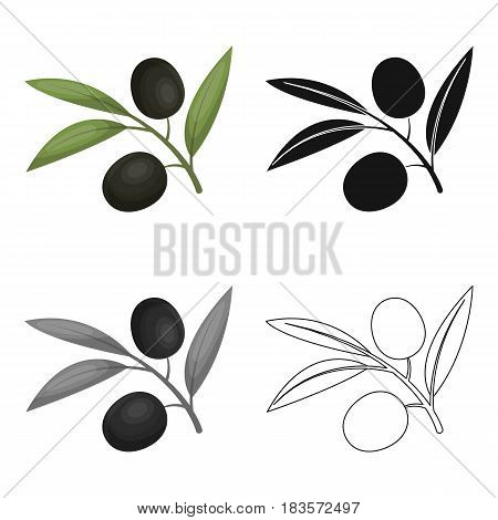 Branch of olives icon in cartoon design isolated on white background. Spain country symbol stock vector illustration.