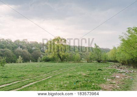 Spring landscape greenery a lot of debris an environmental problem
