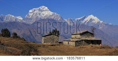 Old farmhouse and majestic mountain Dhaulagiri Nepal.