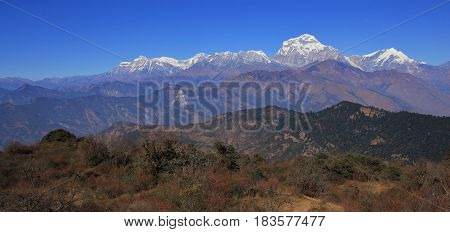 Autumn day in Nepal. Dhaulagiri range seen from a place near Poon Hill.