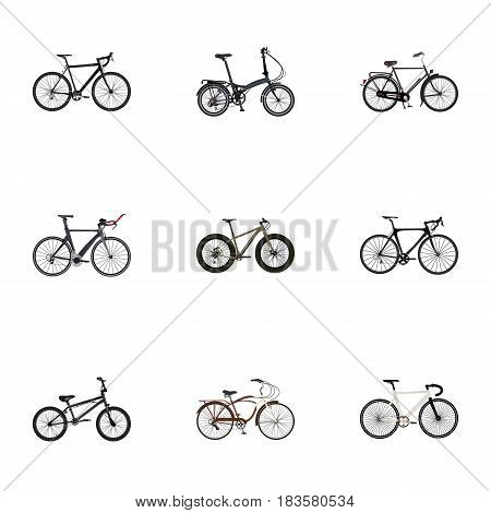 Realistic Extreme Biking, Bmx, Journey Bike And Other Vector Elements. Set Of Sport Realistic Symbols Also Includes Cruise, Road, Track Objects.