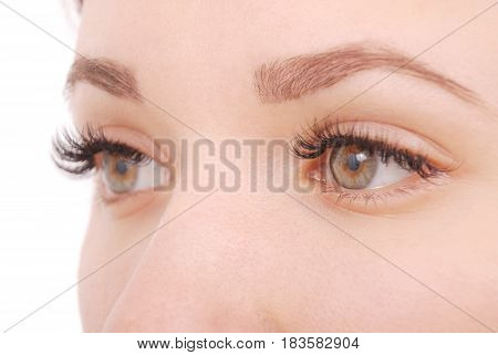 Beautiful woman eyes with long eyelashes. Close up view of grey woman eyes with beautiful brown shades. Studio shot