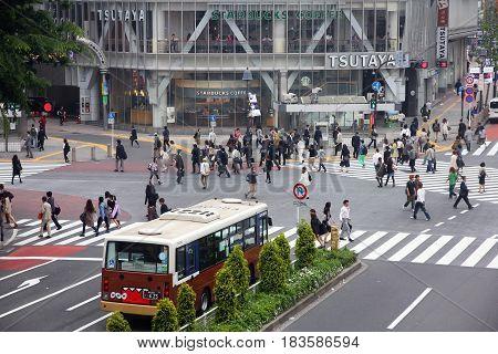 Tokyo Hachiko