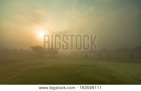 Foggy landscape with trees during sunrise