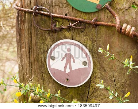 A walking sign on a post with a man in a circle trail leading the direction path