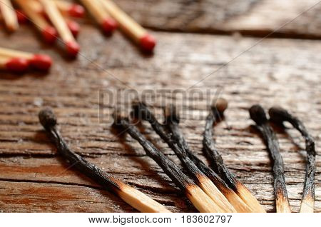 A close up image of several burnt wooden matchsticks.