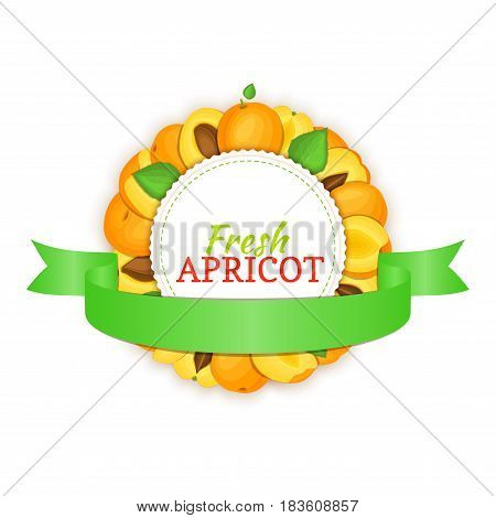 Round frame composed of ripe apricots fruit and green ribbon. Vector card illustration. Circle apricot label. Peach fruits for packaging design of healthy food, jam, fruit marmalade, juice, smoothies.