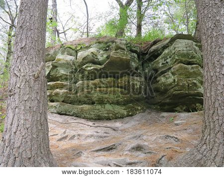 Sandstone and Limestone Rock Outcrop with spring time tree growth along path to St. Louis Canyon in Starved Rock State Park
