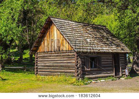 Old Log Cabin Framed Against Forest Background