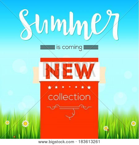 Summer new collection bright advertising banner, text poster. Green, natural grass, white daisies, camomile flower and small red lady-bug. Blue sky, white clouds, summer sky. Template for creativity