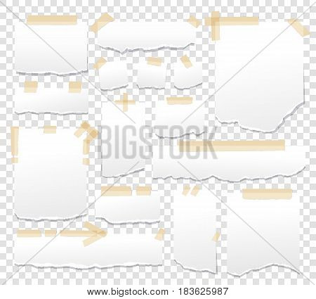 Blank paper torn page notes. Office notepaper sheets isolated on transparent background. Collection of template paper sticker. Sheet page for reminder message .Vector illustration