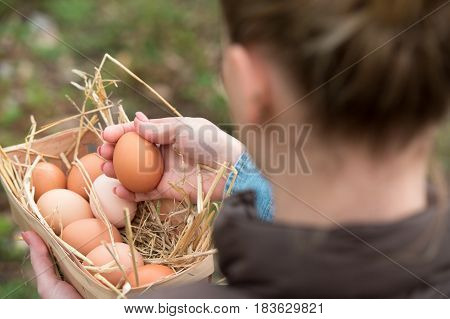 a young farmer female holding a fresh hen egg and other eggs in a basket with nest straw soft focus