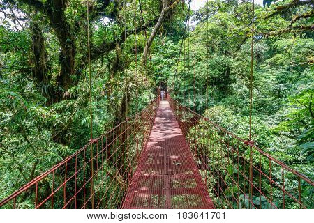 Wide angle view of suspended Bridge at Monteverde Cloud Forest, Costa Rica