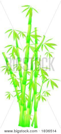 Vector_Bamboo.Eps
