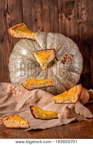 Pieces Of Pumpkin Pie