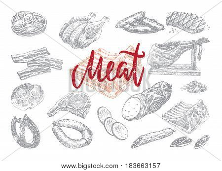 Hand drawn food collection with chicken beef pork bacon meat steak ham salami slices sausages isolated vector illustration
