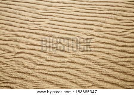 Africa The Brown   Dune   Sahara   Desert Line