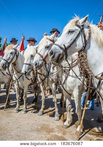 Sent-Mari-de-la-Mer, Provence, France - May 25, 2015. Guards on white horses before the parade of the World Gypsy Festival. The concept of active and ethnographic tourism