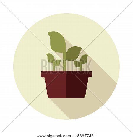 Plant in pot flat icon outline isolated garden flowerpot. Vector Illustration eps 10