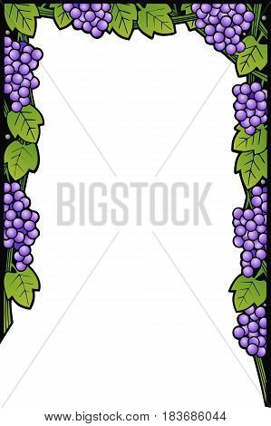 border design with grapes, leaves and vines