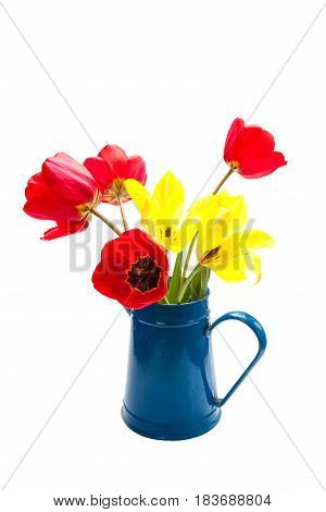Still life with tulips isolated on whit background