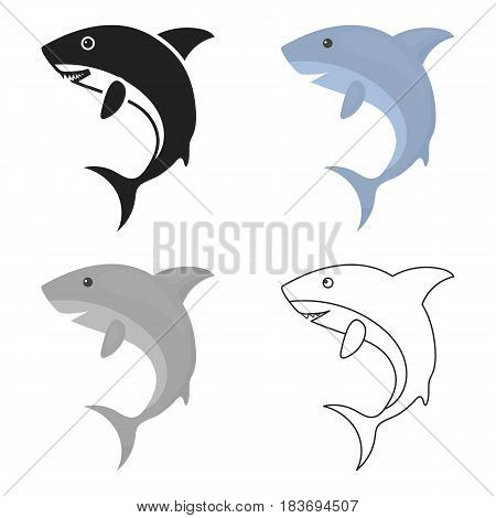 Shark icon cartoon. Singe animal icon from the big animals cartoon.