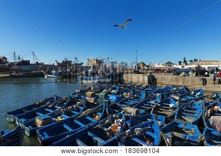 Essaouira Morocco - April 15 2015: View the fishing harbour of Essaoira with the traditional fishing boats in the Atlantic Coast of Morocco Northern Africa.