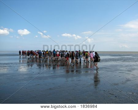 People Walking Into A Sea