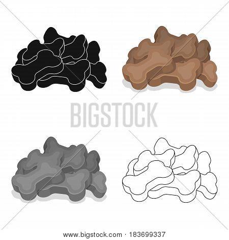 Dry animal food.Pet shop single icon in cartoon style vector symbol stock illustration .