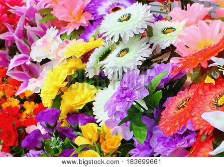 Flowers at the store on a clear day, in the rays of a warm sun, use as background