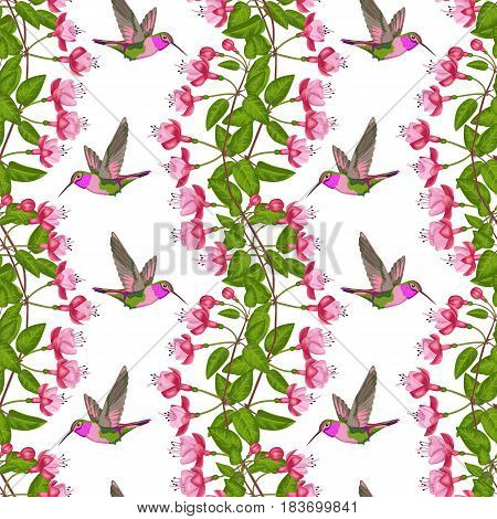 Pink fuchsia and hummingbird seamless pattern on white. Background for postcards, greeting cards, wedding invitations. Romantic floral wallpaper.