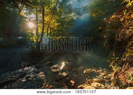 Car in the sunlight making its way through the fog in the background of a mountain forest and a river. Gelendzhik Russia