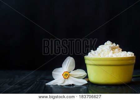 Grainy curd in ceramic ware on a dark background. Sour cheese on a wooden table. Soft sour cheese in a deep plate. Young cheese and daffodil.