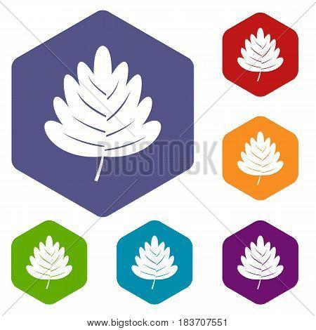 Hawthorn leaf icons set hexagon isolated vector illustration