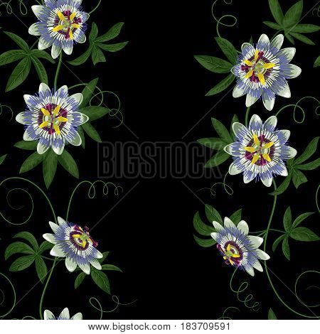 Passiflora seamless border. Wallpaper with exotic branch isolated on black. Background for wedding invitations, greeting cards.