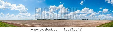 A Field Panorama